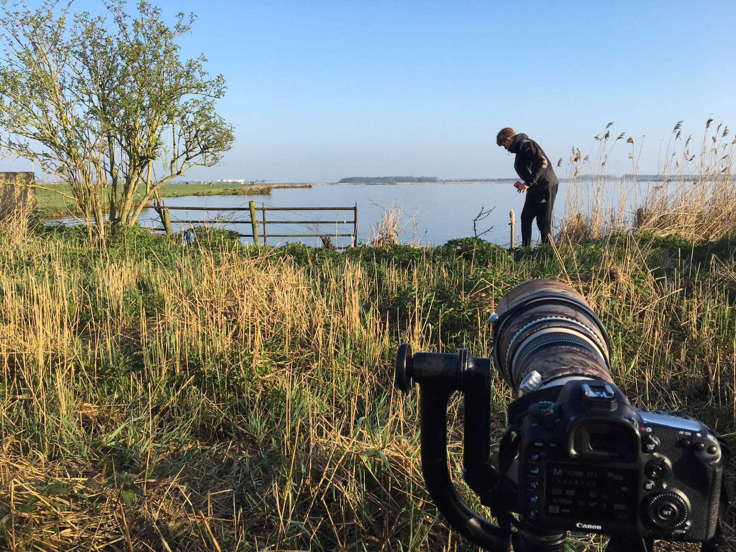 Preparing to photograph bluethroats